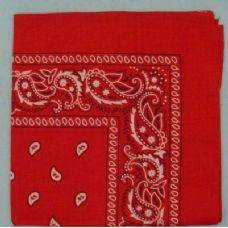 48 Units of Bandana-Red Paisley