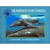 56 Units of Smithsonian Oceanic Collection Series Humpback Goes North - Best Selling items