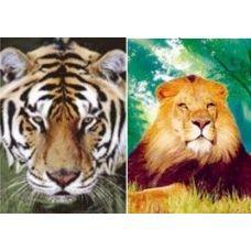 20 Units of 3D Picture-Lion/Tiger - 3D Pictures