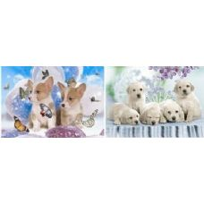 20 Units of 3D Picture-Puppies & Butterflies - 3D Pictures