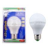 96 Units of 25 Watt LED Light Bulb - Lightbulbs