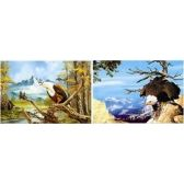 20 Units of 3D Picture 24--Bald Eagle/Mountains - 3D Pictures