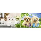 20 Units of 3D Picture 31--Double Puppies - 3D Pictures