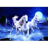 20 Units of 3D Picture 64--Three White Horses - 3D Pictures