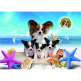 20 Units of 3D Picture 92--Puppies on Beach - 3D Pictures