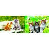20 Units of 3D Picture 71--Three Kittens/Kitten with Duckies - 3D Pictures
