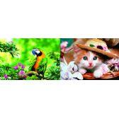 20 Units of 3D Picture 75--Parrot/Kitten with Bonnet - 3D Pictures