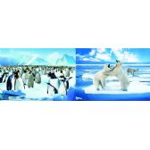 20 Units of 3D Picture 78--Penguins/Polar Bears - 3D Pictures