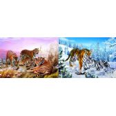 20 Units of 3D Picture 79--Siberian Tigers/Bengal Tigers - 3D Pictures