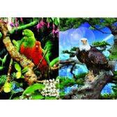 20 Units of 3D Picture 82--Eagle in Tree/Exotic Birds - 3D Pictures
