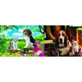 20 Units of 3D Picture 87--Basset Hound with Cat/Beagle with Cat - 3D Pictures