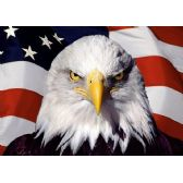 20 Units of 3D Picture 9597--Eagle with Flag - 3D Pictures