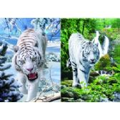 20 Units of 3D Picture 57--White Tigers [Jungle/Snow] - 3D Pictures