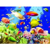 20 Units of 3D Picture 48-- Tropical Fish with Coral - 3D Pictures