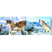 50 Units of 3D Picture 54--Howling Wolf/3 Wolves - 3D Pictures