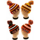 36 Units of Winter Knitted Beanie Hat Cleveland Assorted Colors - Winter Beanie Hats