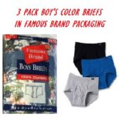 48 Units of FRUIT LOOM-HANES-GILDAN 3 PK BOYS COLOR BRIEFS IN FAMOUS BRAND PK - Boys Underwear