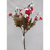 144 Units of Chrysanthem