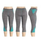 90 Units of Womans Sport Pants - Womens Active Wear