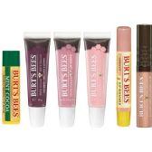 272 Units of Burt's Bees Assorted Lip Lots - Lip Gloss