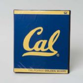 48 Units of Binder 3 Ring Vinyl Cal State Black Golden Bear - Boby Pins