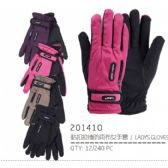 48 Units of Lady's Winter Glove