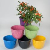 24 Units of Planter Bamboo Fiber Round 6.5x5 Side Swirl Look 6colors Biodegradable L&g Label