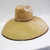 24 Units of Mens Straw Cowboy Hat in Beige XXL - Bucket Hats
