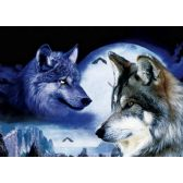 50 Units of 3D Picture 52--Two Wolves with Moon