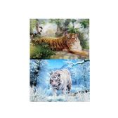 50 Units of 3D Picture 73--Siberian Tiger/Bengal Tiger