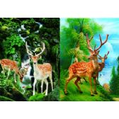 50 Units of 3D Picture 91--Axis Deer