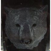 12 Units of 3D Laser Etched Crystal-Bear Head