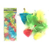 144 Units of Assorted Craft Feathers - Pom Poms and Feathers