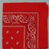 24 Units of Wholesale Bandana Cotton Red Paisley Fabric - Bandanas