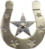 24 Units of Star Belt Buckle