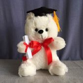 "24 Units of 8.5"" WHITE COLOR GRADUATION BEAR"