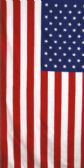 "24 Units of Cotton Printed Fiber Reactive Beach Towel 30"" x 60"" American Flag - Beach Towels"