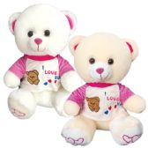 12 Units of Sixteen Inch Bear With Clothing - Valentine Decorations