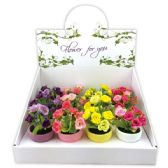 """72 Units of 5""""Rose in pot - Artificial Flowers"""
