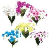 24 Units of Fifteen Head Orchid Assorted Color - Artificial Flowers