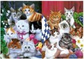 50 Units of 3D Picture 9710--7 Cats