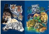 50 Units of 3D Picture 9711--Wild Cats