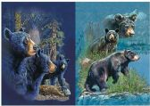 50 Units of 3D Picture 9718--Three Bears