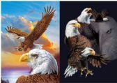 50 Units of 3D Picture 9719--Eagles