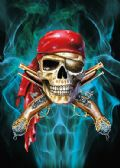 50 Units of 3D Picture 9730--Pirate Skull