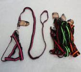 "36 Units of Small Harness and 42"" Shock-Absorbing Leash"
