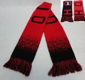 24 Units of Knitted Scarf with Fringe [OHIO] Digital Fade