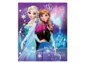 108 Units of Disney Frozen Poly Portfolio Folder Countertop Display - Folders and Report Covers