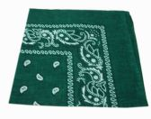 72 Units of Paisley Bandana In Forest Green - Bandanas