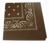 72 Units of Paisley Bandana In Brown - Bandanas